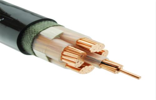 大豐YJV-0.6/1kV 1X6電纜多少錢一米克拉瑪依