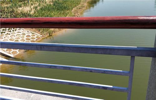 滁州不銹鋼碳素鋼護欄質量有保障
