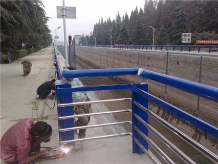 昌都碳素钢不锈钢河道护栏防护栏优级质量