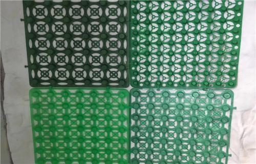 吉安20高塑料排水板长期加工生产
