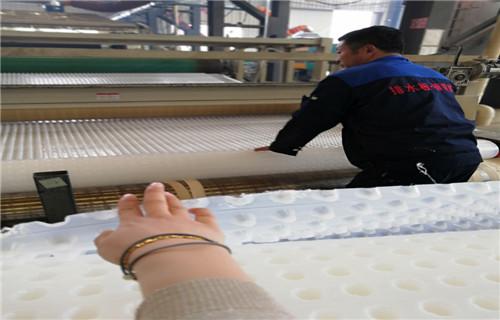 推进排水行业健康发展凹凸型排水板批发平谷