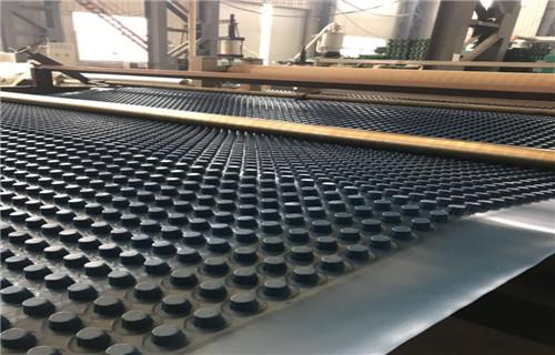 洛川招商车库顶板防根刺排水板 保湿绿化蓄排水板