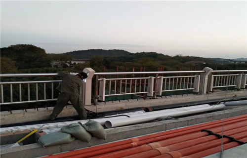 常德城市桥梁护栏AAAA级产业
