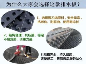 郑州塑料排水板多少钱一平米/多少钱一平米