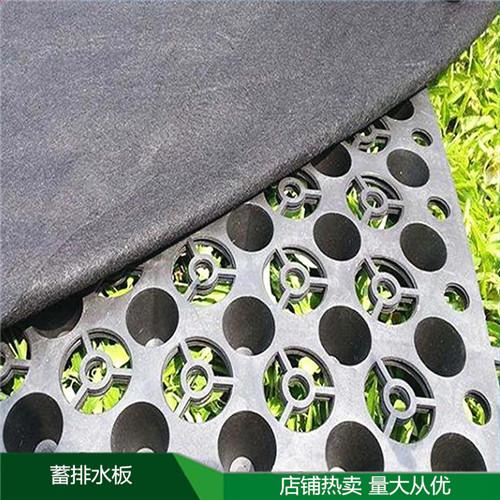 郑州塑料蓄排水板哪家买大量库存供应