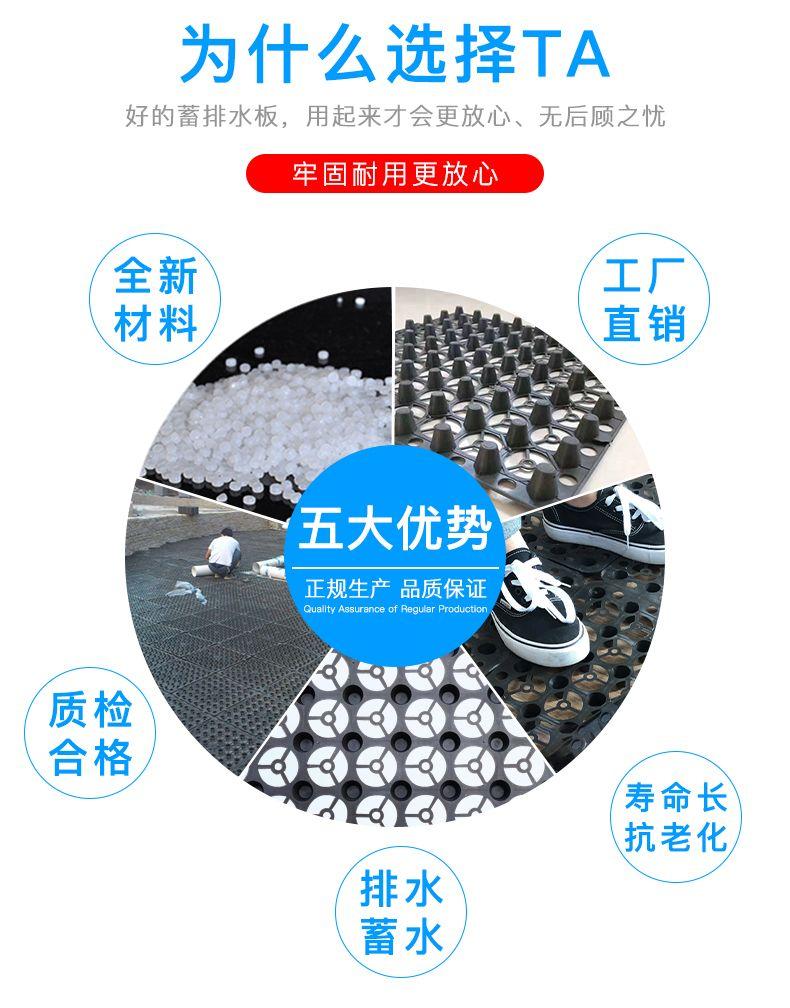 郑州7公分塑料植草格报价本地厂家