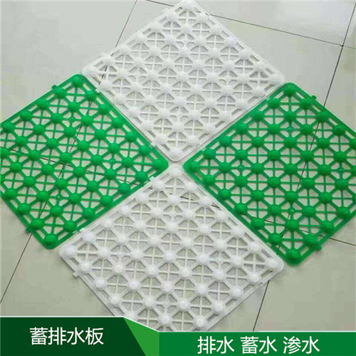郑州塑料排水板厂家批发/批发价