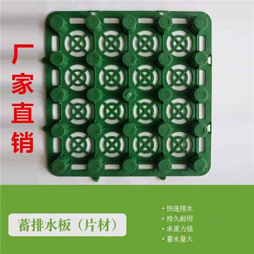 郑州蓄排水板供货商价格实惠
