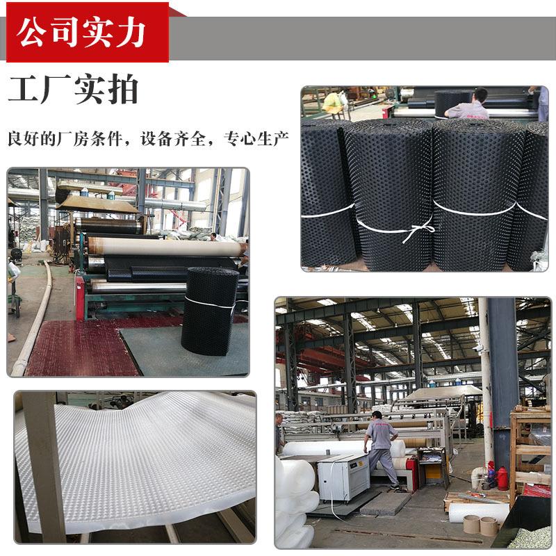 郑州7公分塑料植草格报价欢迎参观