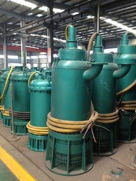 吉林通化輝南縣BQS200-40-45/N排污泵
