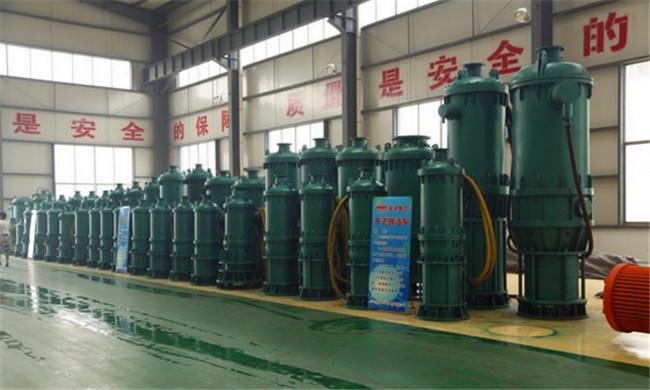 衢州衢江BQS60-80/2-30/N潛水泵