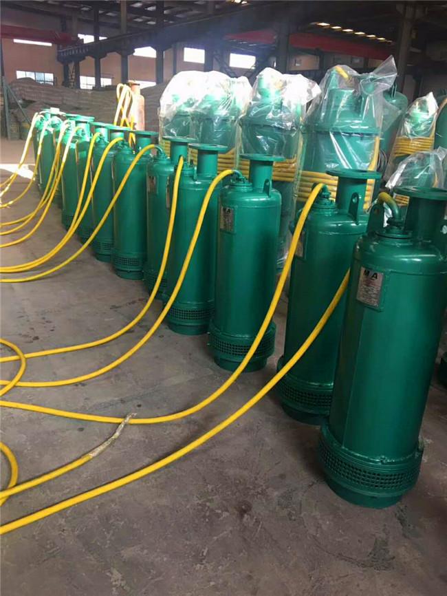 云南保山騰沖市BQS180-90-90潛水泵