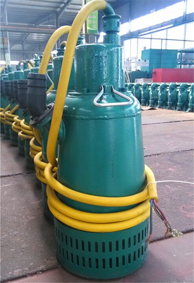 安徽安慶岳西縣BQS12.5-120/5-9.2/N深井泵