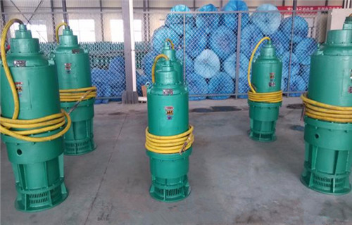 资阳隔爆BQS100-100-55/N排沙泵