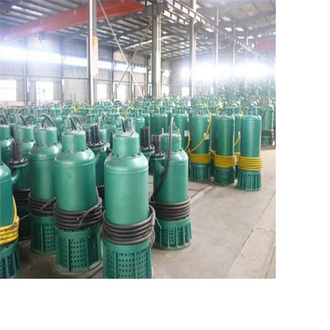 福建泉州排沙泵BQS150-75-55/N