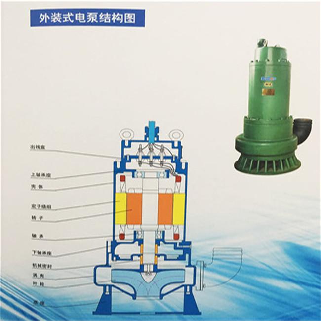 上海BQS30-20-3/NS排沙泵