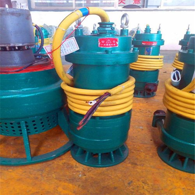 嘉兴BQS100-90/3-55污水泵