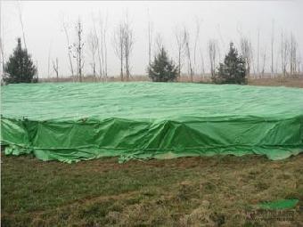 衡水綠籬防寒布